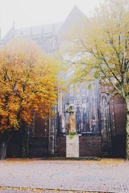 The Dom Church